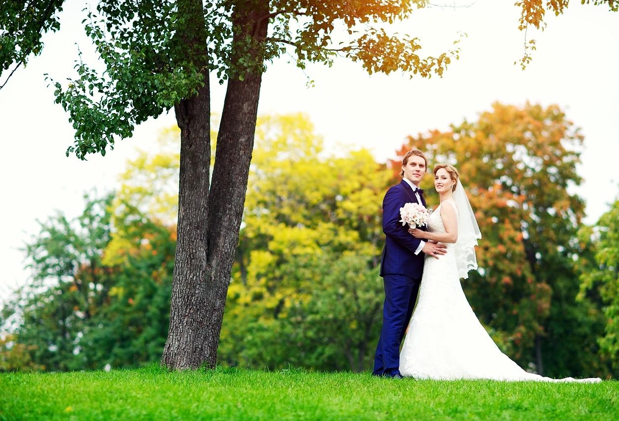 Свадьба в Донецке (рис. 1)