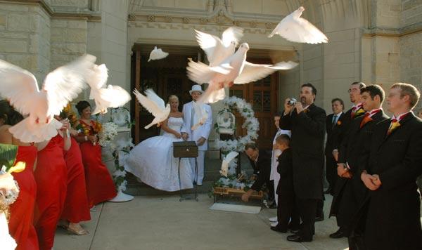 Особенности выбора свадебного платья (рис. 9)
