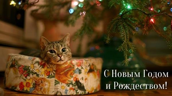 С наступившим 2013 годов и приближающимся Рождеством! (рис. 9)