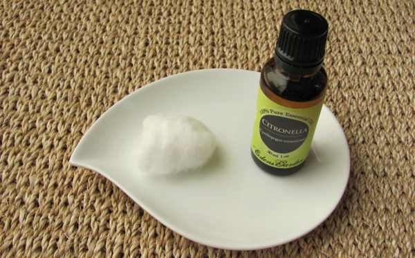 Эфирное масло Цитронелла (рис. 1)